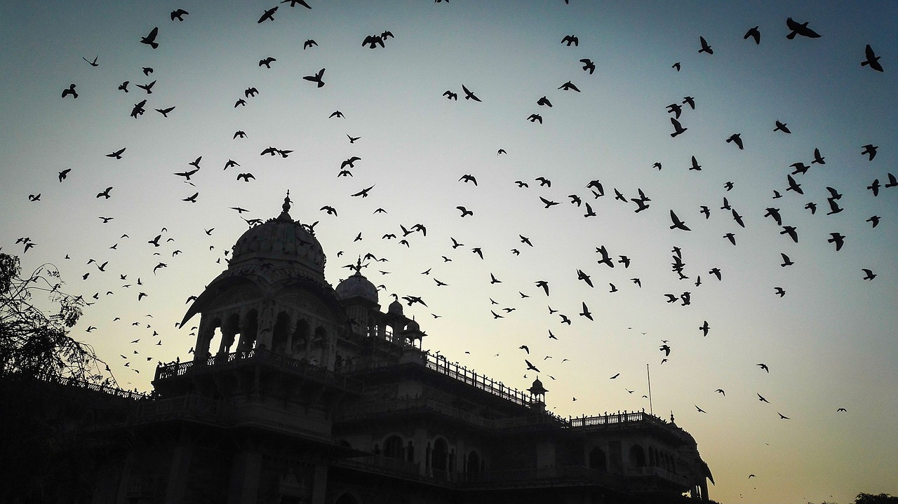 Viajes a India desde Paraguay