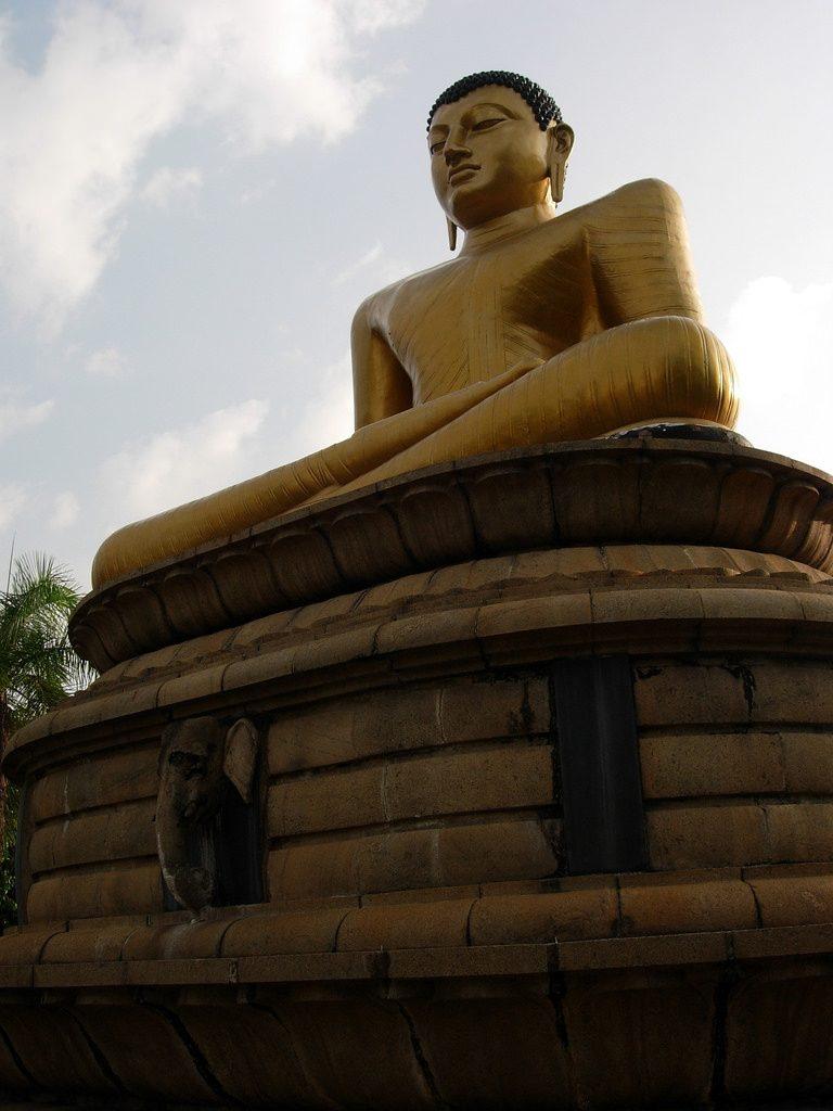 viajar a india para conocer el budismo