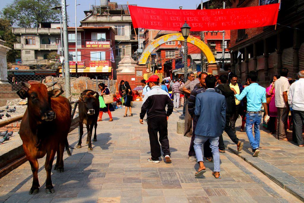 viajar a nepal y bután